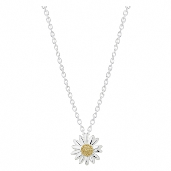 Daisy 12mm Daisy Star Necklace